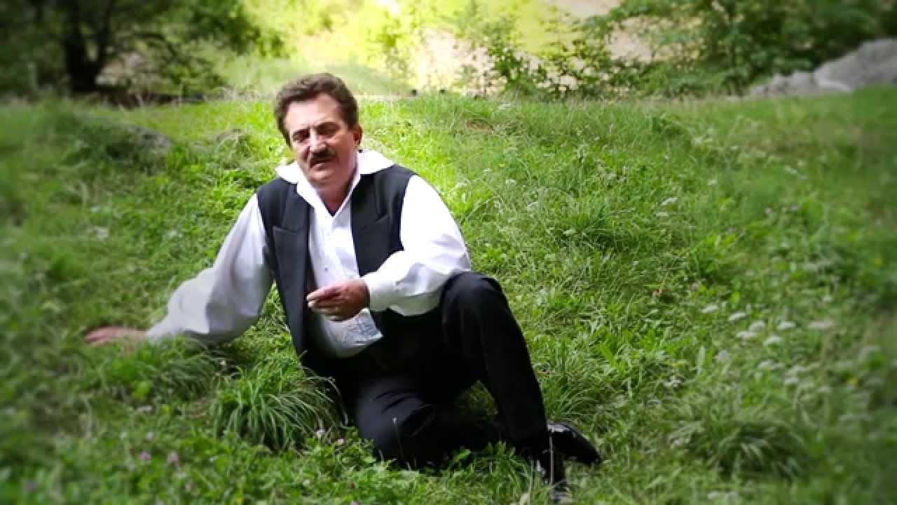 petrica matu stoian firicel de iarba verde