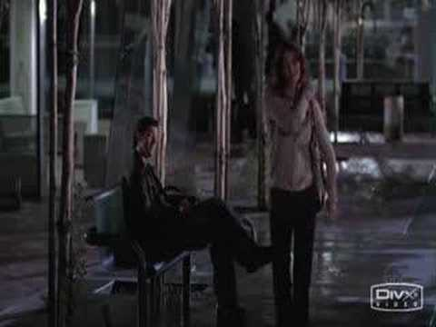 Derek and Meredith - It Must Have Been Love