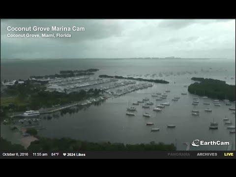 LIVE CAM: Coconut Grove, Miami, FL