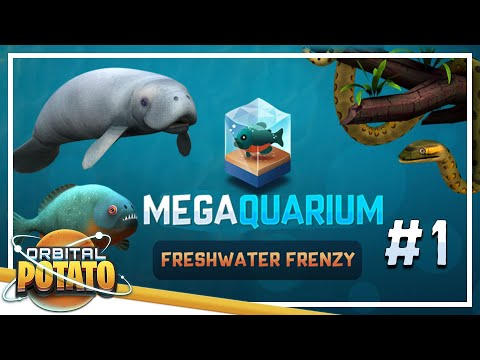 The Best Fish Tanks - Megaquarium: Freshwater Frenzy! - Episode #1 - Strategy Management Tycoon