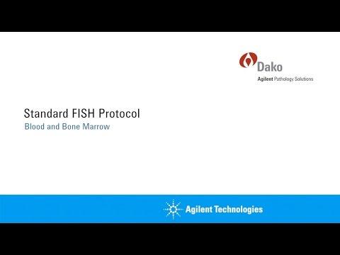 Standard Agilent FISH Protocol: Blood And Bone Marrow