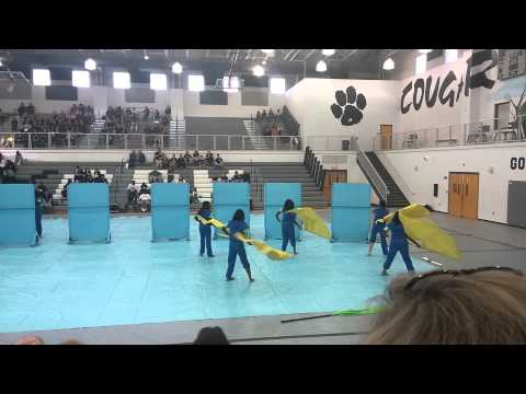 2015 West Ashley High School Winterguard
