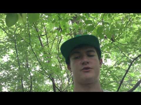 Salem Menthol Cig Review