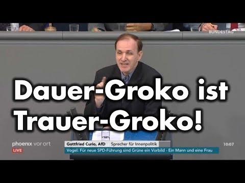 """Rede zum """"Geordnete-Rückkehr-Gesetz""""   Dr. Gottfried Curio"""