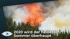 2020 wird der heißeste Sommer aller Zeiten ! - Das sind die Folgen!