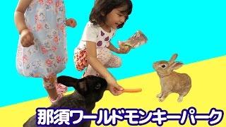 ウサギにエサをあげたよ♪ 那須ワールドモンキーパーク Vol.2  himawari-CH thumbnail