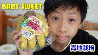 臭Fing老兄試食:BABY SWEET 高地栽培 (2019-03-17)
