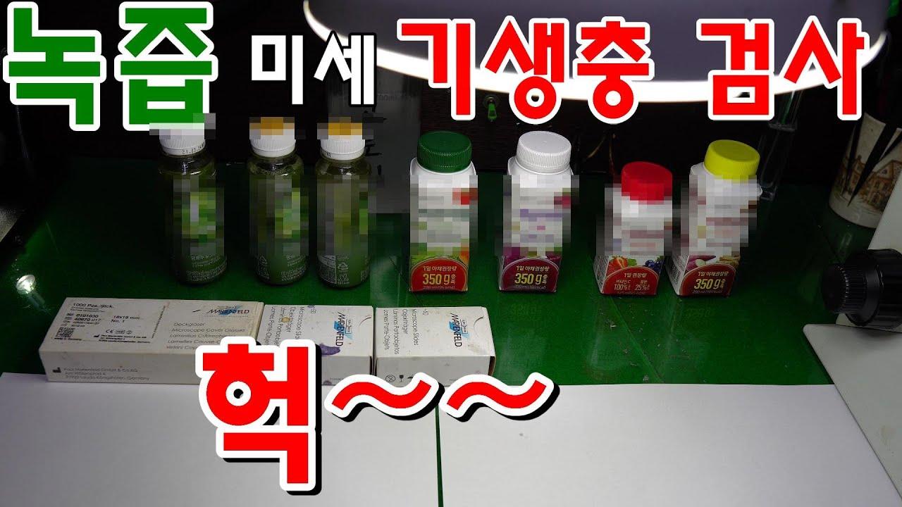 녹즙 미세 기생충 검사/미세 기생충 발견~~