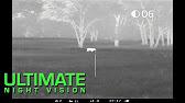 Кабаны в тепловизионный прицел PULSAR APEX XD38 - YouTube