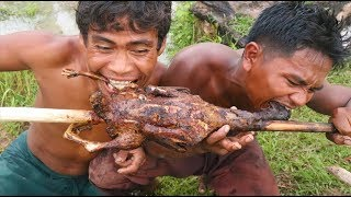 Find Water Duck N Cook For Dinner