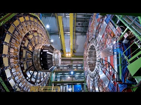 We have a discovery: the future of the Higgs boson