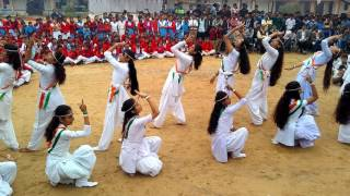 chak de  India girls school  samdari thumbnail