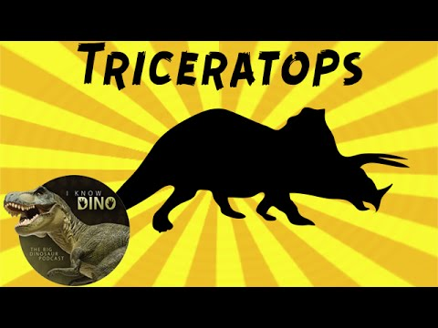 Triceratops: Dinosaur of the Day