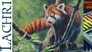 Inktense painting demonstration - Red Panda - w/ Lachri