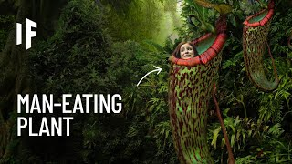 What If You Were Trapped in a Meat-Eating Plant?