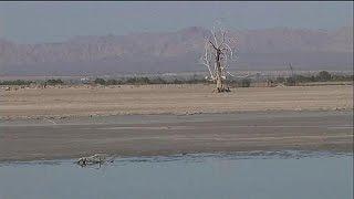 Salton Sea: größter See in den USA trocknet aus - science
