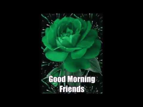 Good Morning Friends Guten Morgen Freunde Youtube