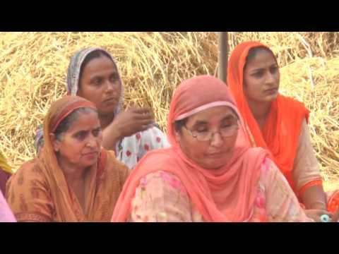 Parm Hans Sant Milkha Singh Ji Riar