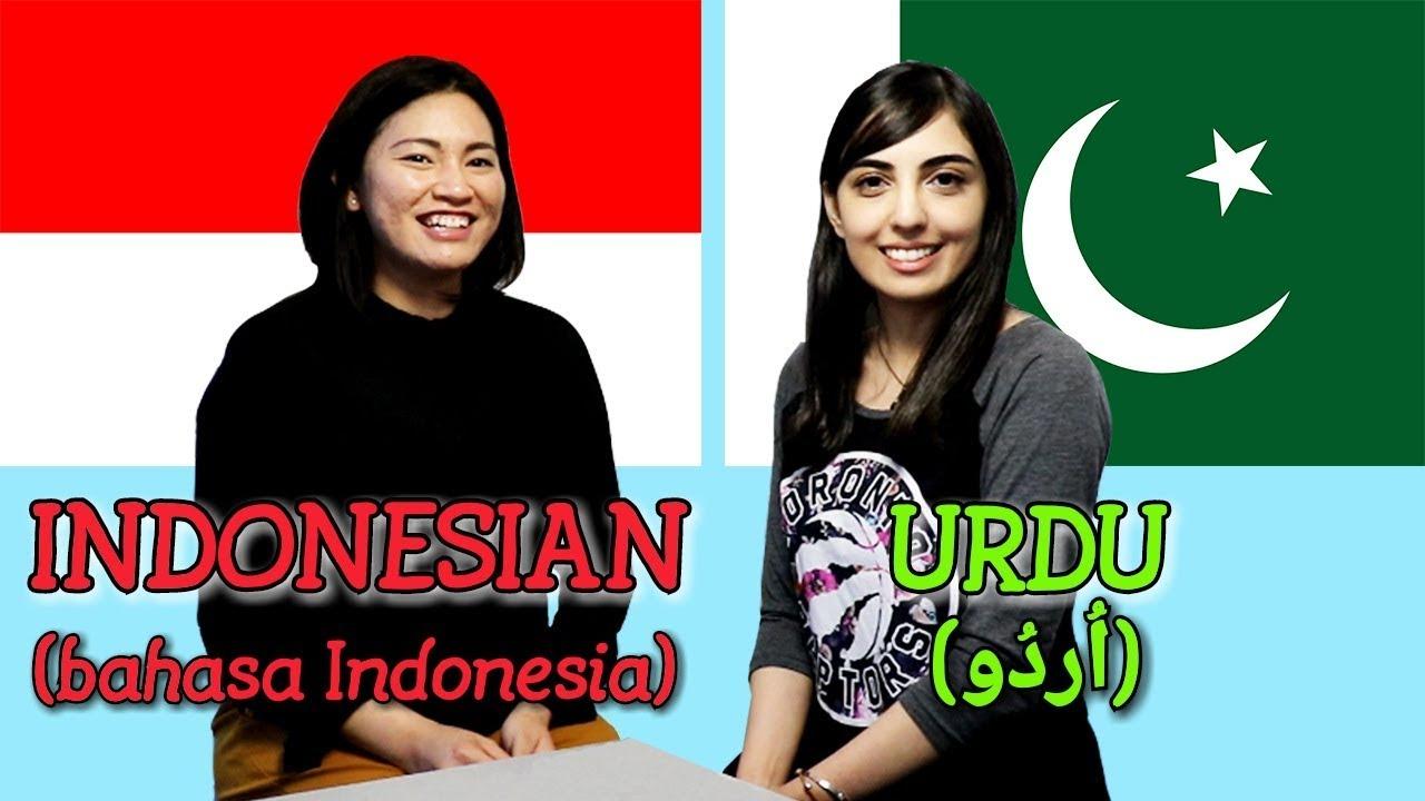 Similarities Between Indonesian And Urdu Youtube