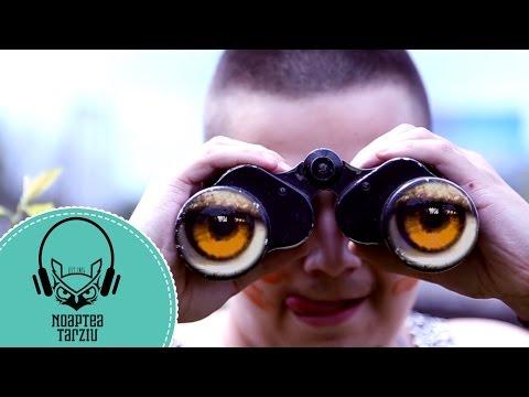Noaptea Târziu - Dolofan - Official Video