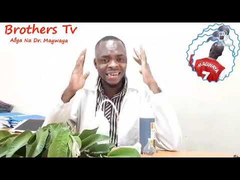 Download Afya Na Dr. Magwaya Ep2 - Faida Za Majani Ya Mpera : Inatibu Ukosefu wa Nguvu za Kiume