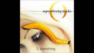 APC Thirteenth Step Full Album