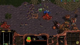 StarCraft: Remastered Co-op Campaign Zerg Mission 10 - Full Circle