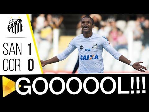 Santos 1 x 0 Coritiba | GOL | Brasileirão (20/05/17)