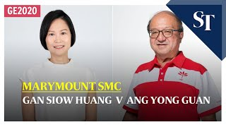 Marymount Smc: Gan Siow Huang V Ang Yong Guan   Ge2020   The Straits Times