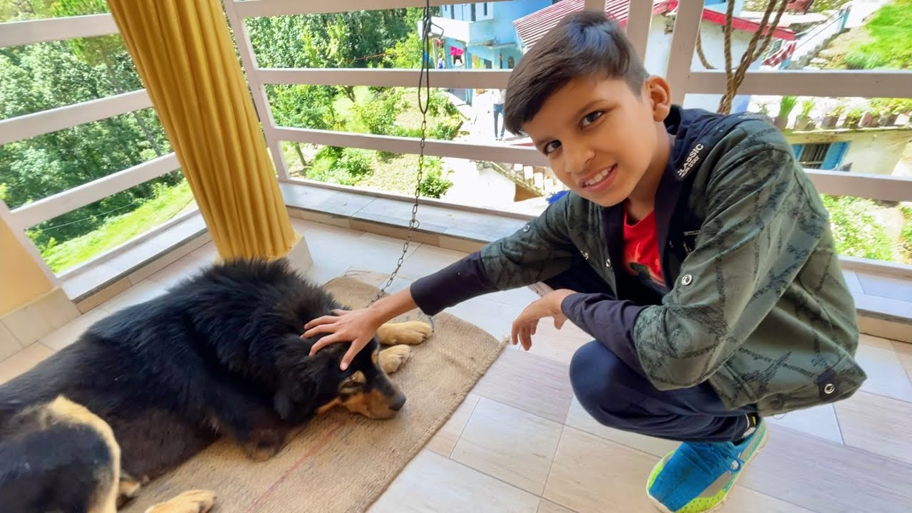 Etna innocent Dog Nhi dekha 🥺