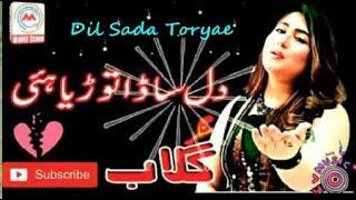 Gulaab | Dil Sada Toryae | Latest Punjabi Songs | LYRICS LOVERS 2020
