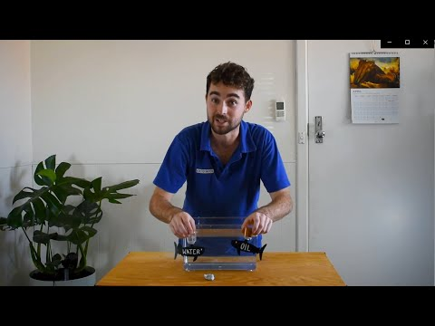 How Do Fish Maintain Neutral Buoyancy? | At Home Science Experiment | Scitech WA