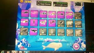 4 часть игры про дельфина!