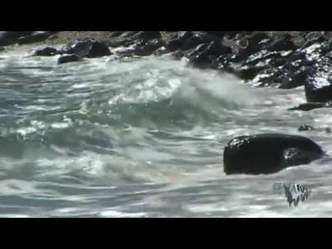 Релакс музыка Морской Прибой скачать
