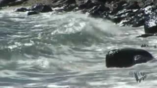 Download Море-релакс Mp3 and Videos