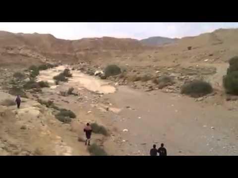 Rebirth Of Zin River In Israeli Desert