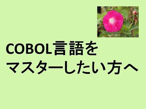 COBOL言語をマスターしたい方へ、アイライトIT経営研究会