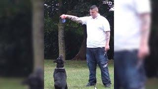 Dieser Mann wollte sich umbringen - doch dann sieht er das im Maul seines Hundes