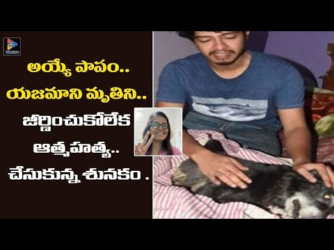 Mallikarjun Rao's Wife Excelent Comedy With Rajendra Prasad    Comedy Express from YouTube · Duration:  13 minutes 47 seconds