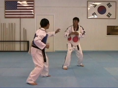 Taekwondo: Advanced Hook Kick Counter (taekwonwoo)