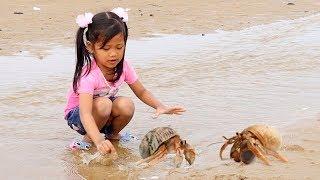 Download Video Yesss Dapat!! Berburu Kelomang Umang Umang - Liburan Seru Main di Pantai Bermain Air & Naik Perahu MP3 3GP MP4