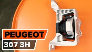 Wie und wann Motorhalter hinten rechts PEUGEOT 307 SW (3H) tauschen: Video-Anweisung
