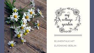 Blumen-Talk