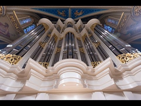 Murdy Family Organ | University of Notre Dame | Erik McLeod from Paul Fritts improvises