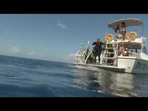 Croisiere Au Dela plongee grenadines trailer bande annonce