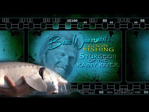 MONSTER Sturgeon Fishing On The Rainy River Minnesota - Babe Winkelman's Good Fishing