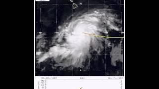 Hurricane Iniki (1992)