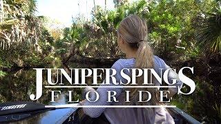 Randonnée en Canot avec des alligators à Juniper Springs