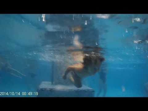 Голая таня в бассейне что