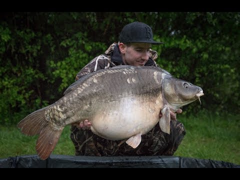 Big Carp France - Le Queroy 2017